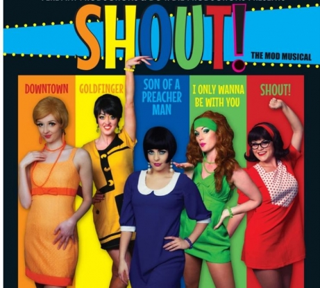 shout the 60s mod musical hawk s well theatre sligo
